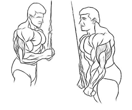reverse-grip-cable-tricep-extension